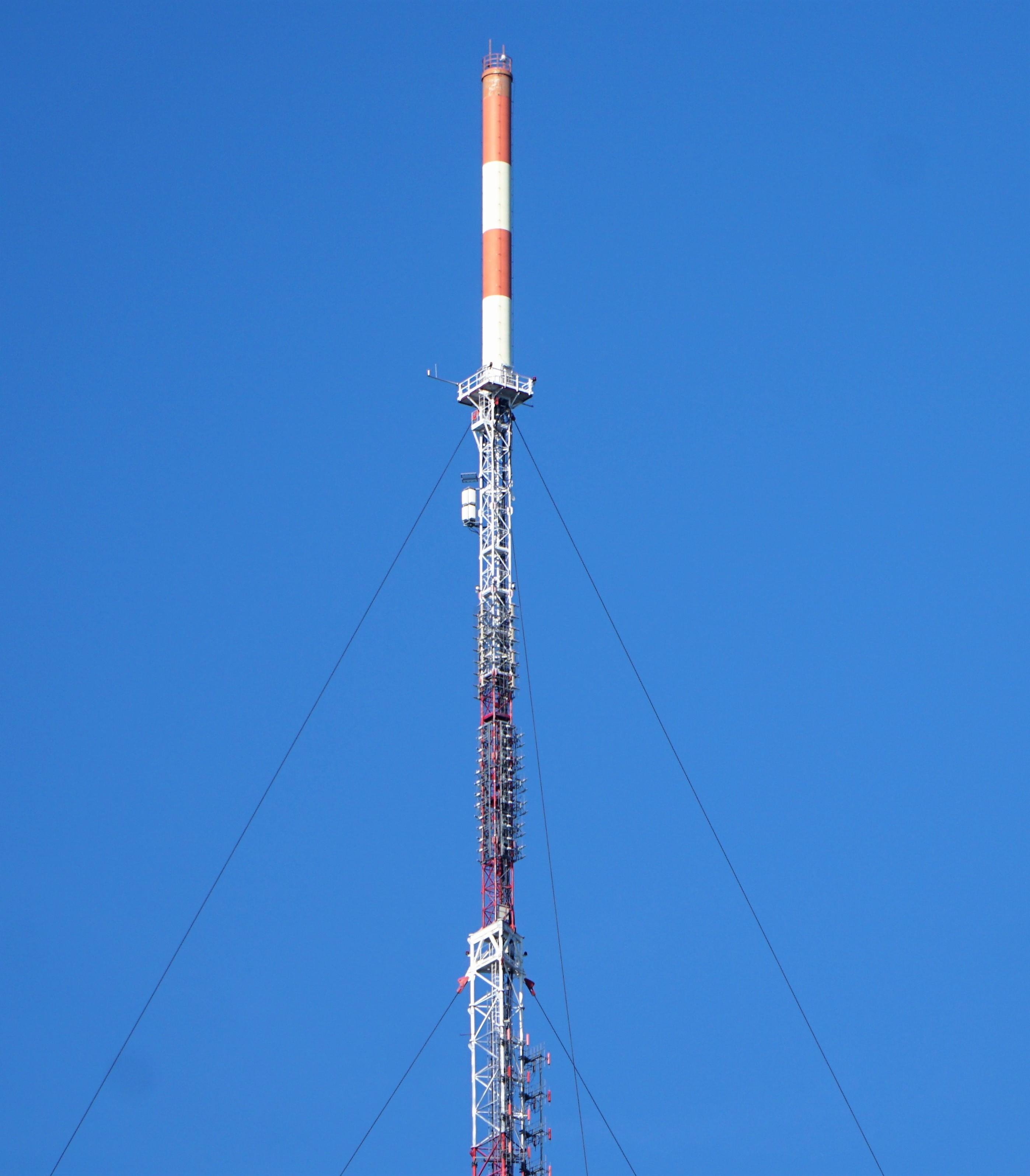 DSC02870 (2)